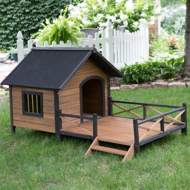 casas perro 1