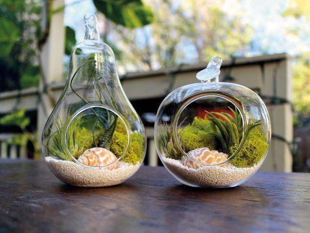 decorar con terrarios 15