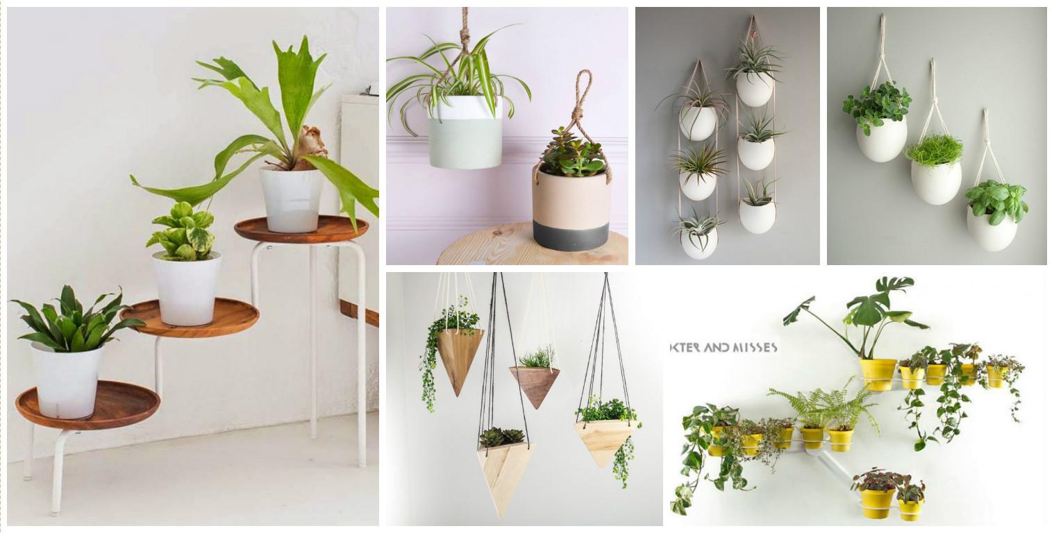 15 Originales Ideas De Jardines Colgante Interior