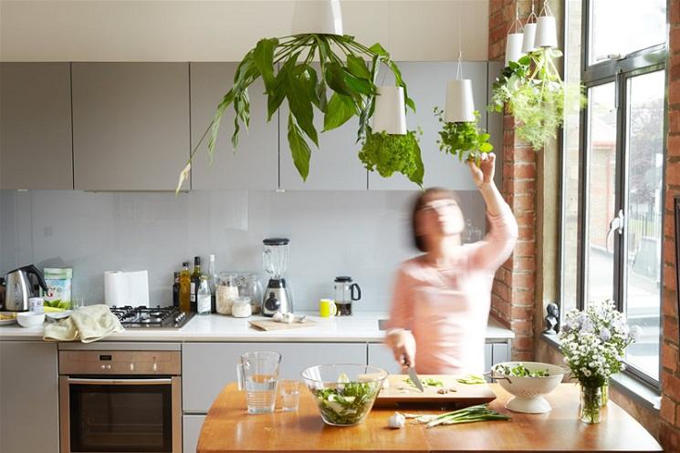 15+ Originales Ideas de Jardines Colgante Interior