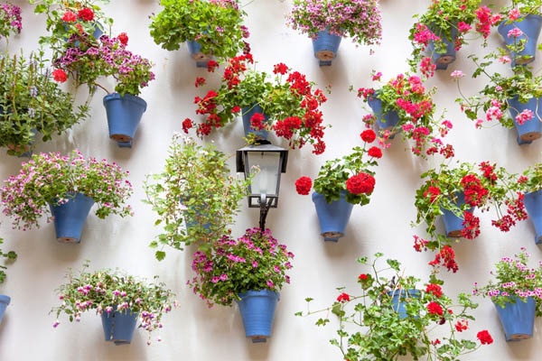 15+ Ideas Sorprendentes para Hacer Jardines Verticales en Casa