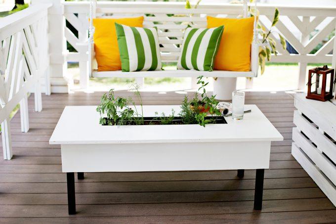 15+ Magníficos Mini Jardines para Tu Mesa de Café