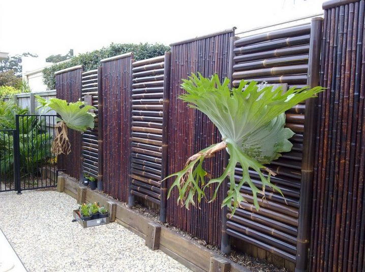 paneles cerca bambu 3
