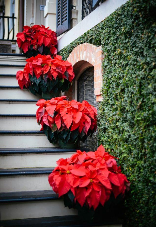 puertas-de-entrada-navidad-11