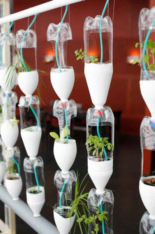 reciclar botellas plasticas 7