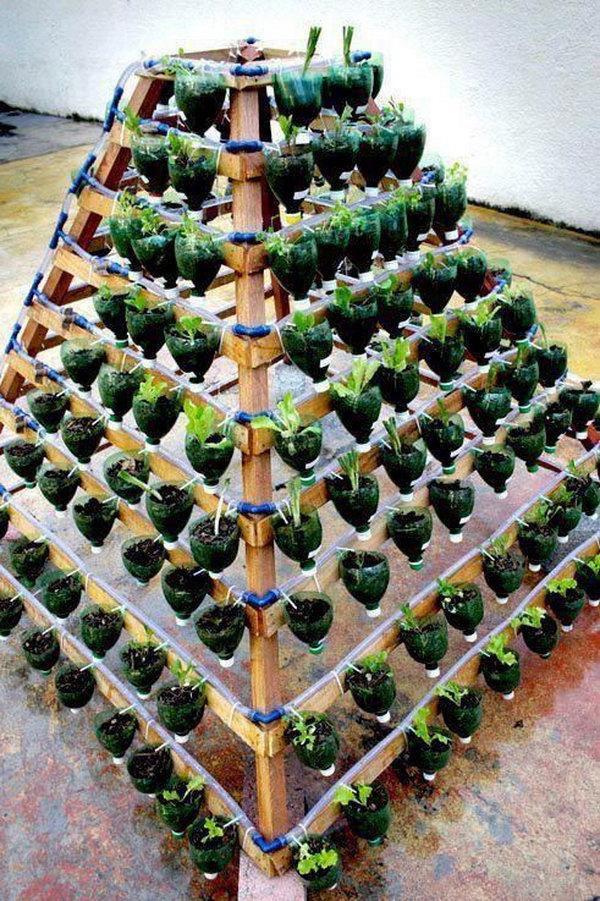 reciclar botellas plasticas 9