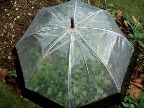 15+ Increíbles Manualidades para Reciclar Paraguas Viejos
