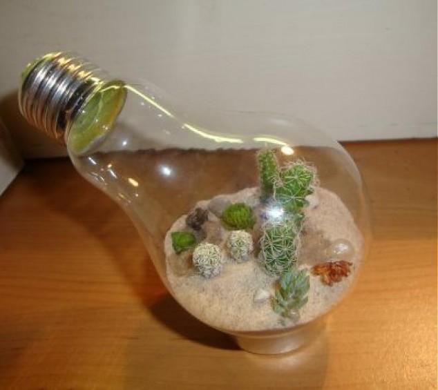 reutilizar bombillas 10
