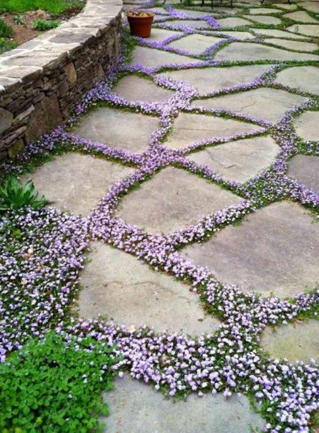senderos y caminos de piedras en el jardin 13